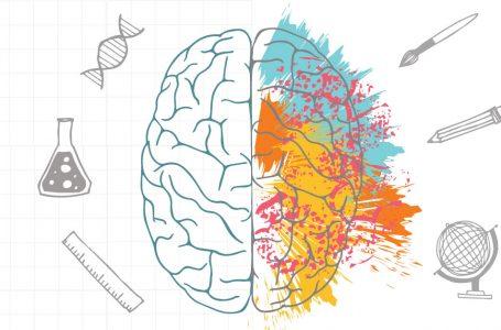 Cum funcționează creierul uman? – Lara Boyd