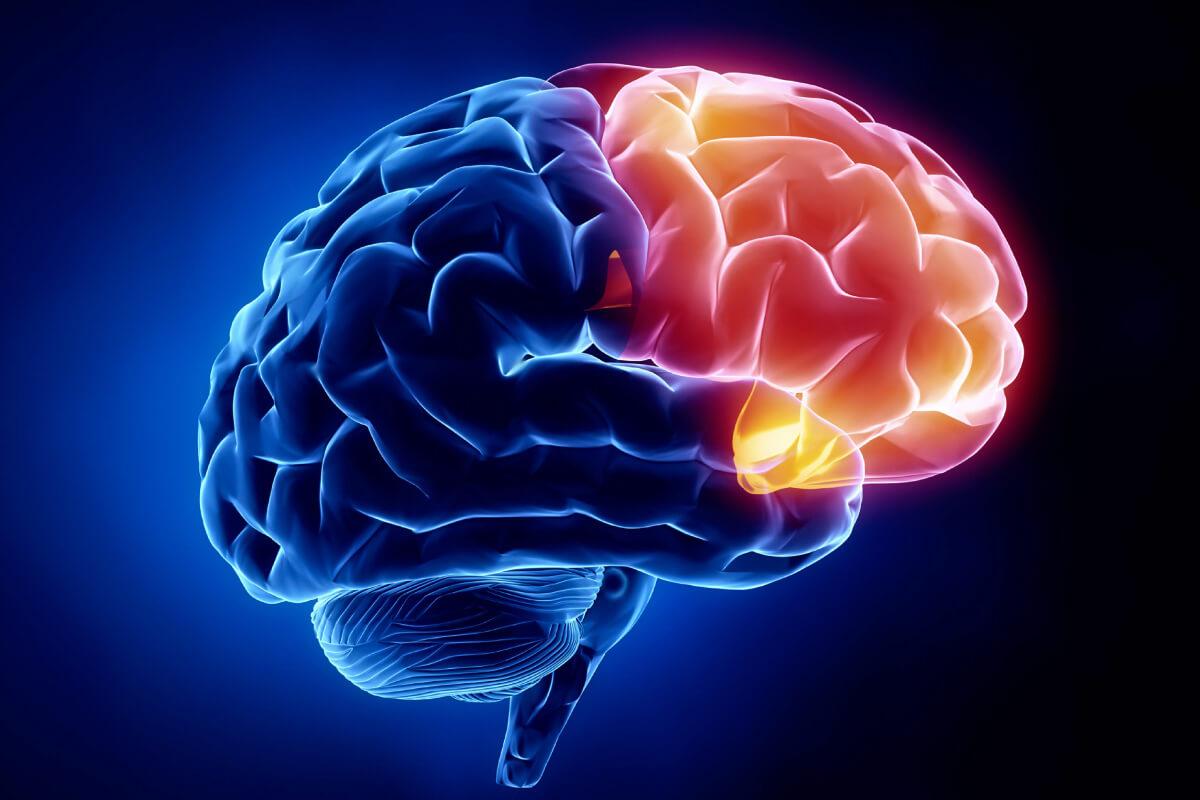 20 de lucruri incredibile despre creier