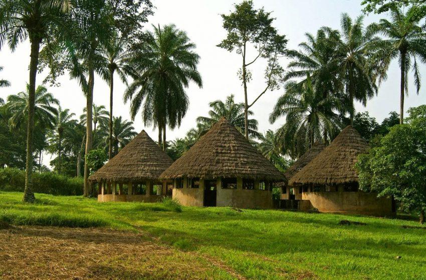 12 LUCRURI INTERESANTE DESPRE REPUBLICA DEMOCRATA CONGO