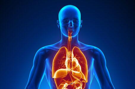 Top 20 lucruri interesante despre corpul uman