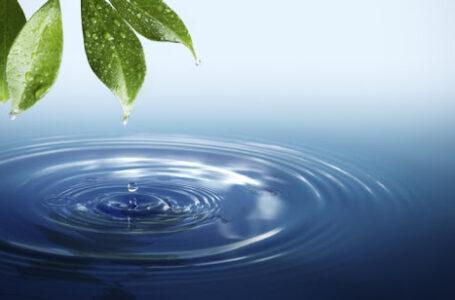 Top 17 lucruri interesante despre apă